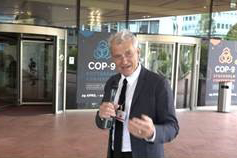 Behind the Scenes at the Basel, Rotterdam and Stockholm Conventions 2019 COPs - video