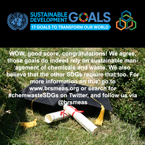 Failed the chemicals, wastes and SDGs quiz