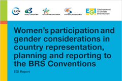 Women's participation and gender considerations in country representation