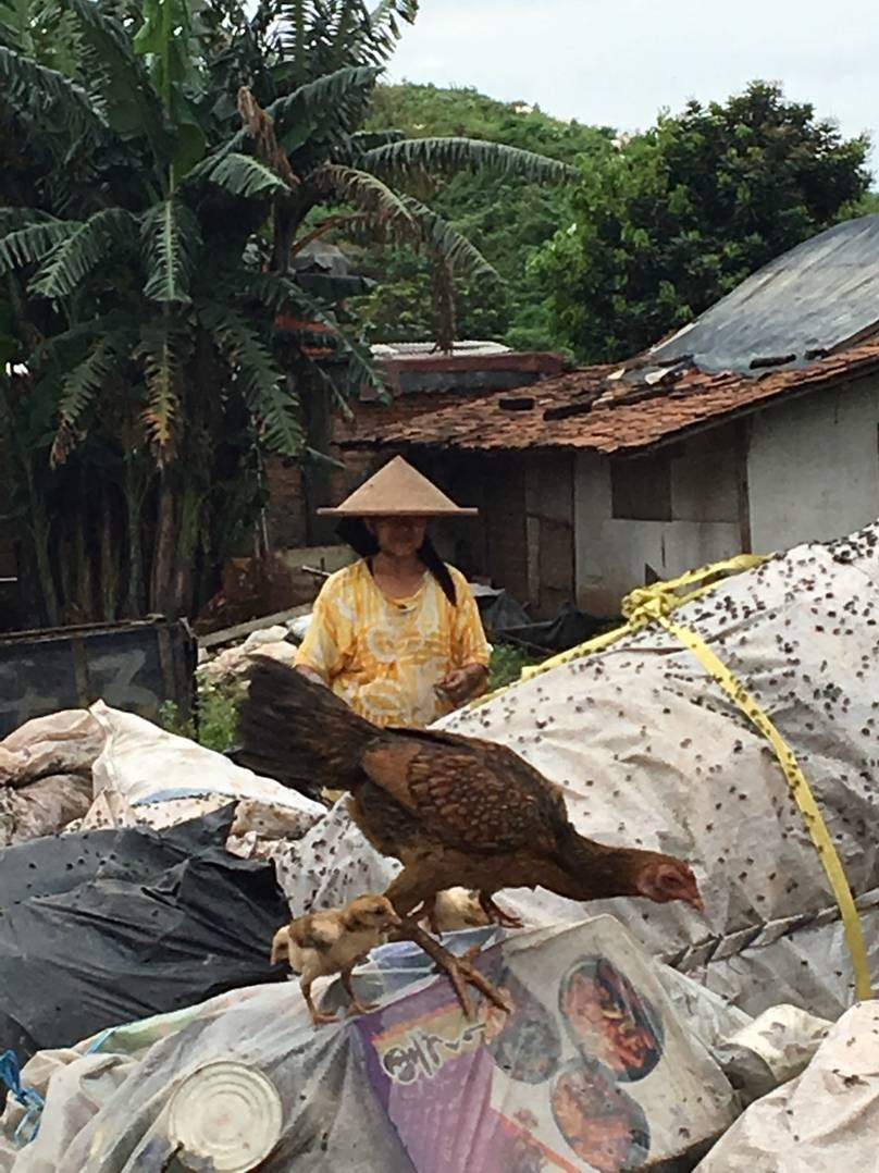 Sorting waste 'at home' involves many women